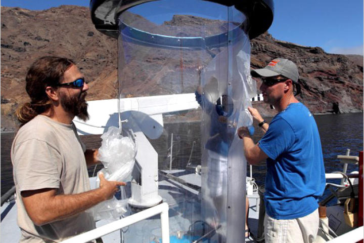 "This contraption is called a ""shark tube."" Made of polycarbonate plastic, the shark tube is only a quarter of an inch thick, but strong enough to resist a great white — at least, shark expert Chris Fallows (right) hopes it is."