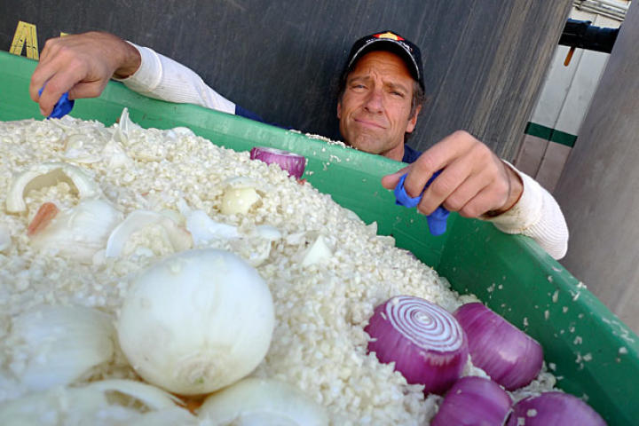 """According to its Web site, Gills Onions in Oxnard, Calif., is """"one of the nation's largest, family-owned onion growers and operates one of the largest, most innovative and sustainable fresh-cut onion processing plants in the world."""""""