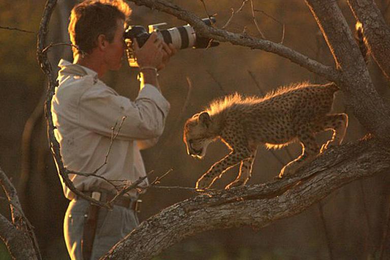 Kim Wolhuter with a curious cheetah cub.