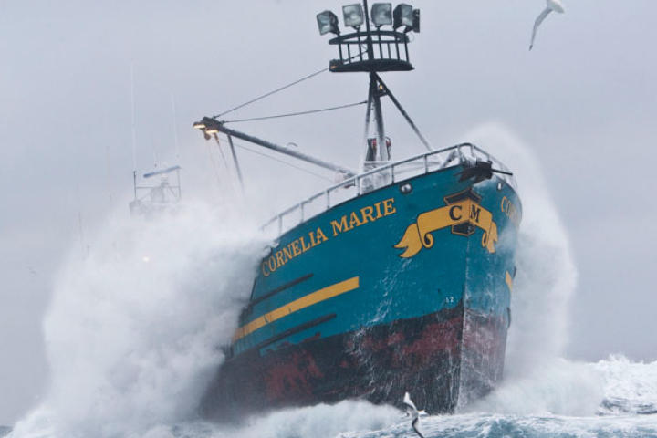 The Cornelia Marie plows through frigid seas during the 2010 Opilio fishing season. Capt. Phil's boat got a later start than the rest of the fleet because she was undergoing repairs following a collision with a reef.