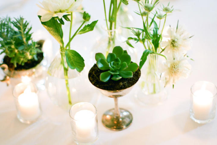 Go minimal with early spring centerpieces, like this collection of succulents and simple white flowers.
