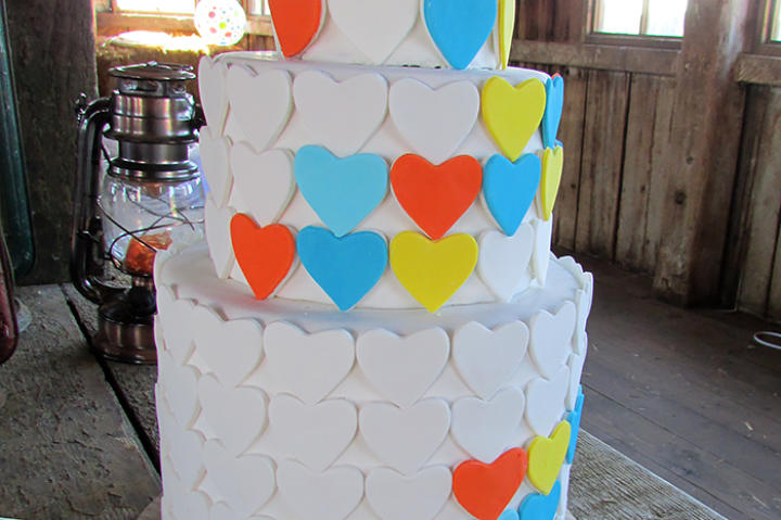 The cake echoed Hannah & RJ's color scheme of persimmon, peach, green, aquamarine blue, and grey.