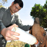 Yao Ming visits Kenya on his mission to educate and raise awareness to
