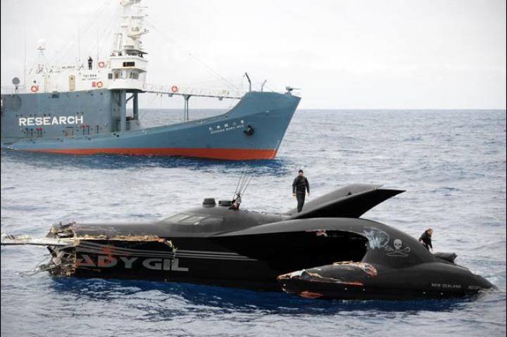 Of the six crew members aboard the Ady Gil, only one sustained minor injuries -- WHALE WARS cameraman Simeon Houtman of New Zealand.