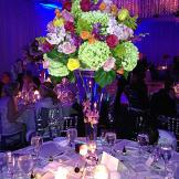 Nicolle's Wedding