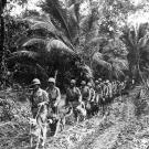 Marine Raiders and a pack of scouting and messenger dogs head off to the frontlines in Bougainville, an island that forms part of the Solomon Islands chain, 1943.