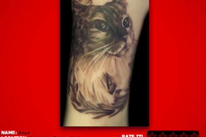 17. I am an animal lover! Especially beautiful, fluffy kittens! This black and grey tattoo is nice and smooth.