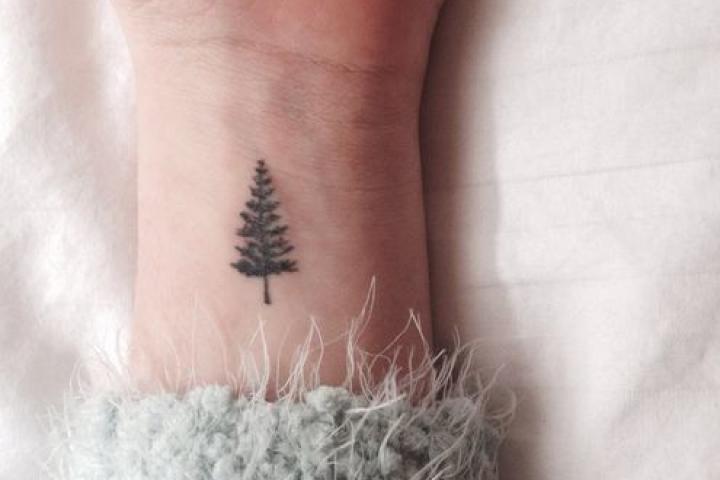Pine Tree Tatoo
