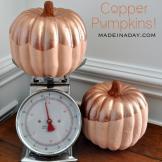 Copper Pumpkin