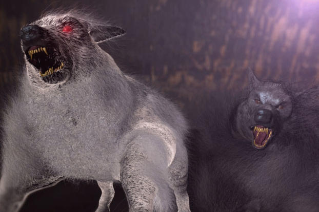 Wampus Beast Mountain Monsters The devil dog is part of the
