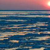 The Bering Sea, where the boats of Deadliest Catch do their work, is n