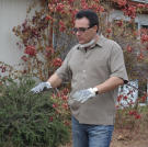 Lou Amoroso looks over the landscaping at a recently purchased property.