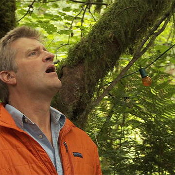 What's in Store on Treehouse Masters?