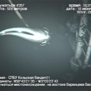 The New Evidence:Possible Deep Sea Hunting Footage
