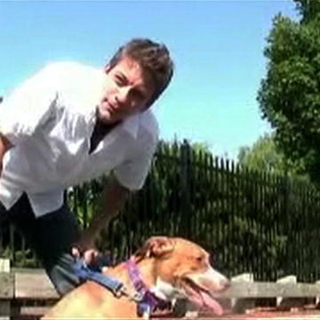 Zak George's 10 Easy Dog Tricks