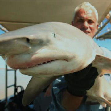 River Monsters Highlights