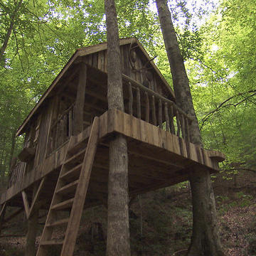 Beautiful Backwoods Treehouse, Team Turtle's Dream Come True