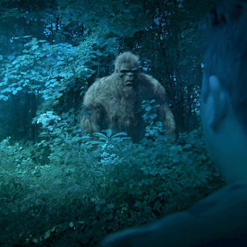 Matt Returns to the Site of his First Bigfoot Encounter