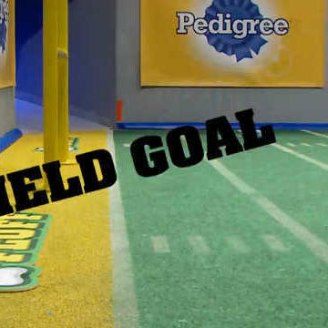 Second-ever Field Goal in Puppy Bowl History!