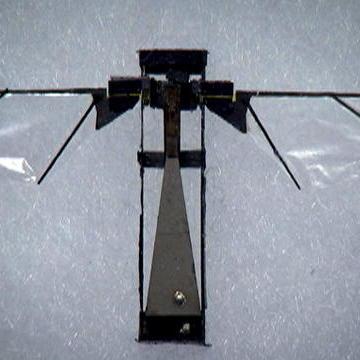 Microrobotic Fly