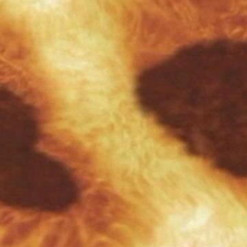 The Sun - Solar Flares