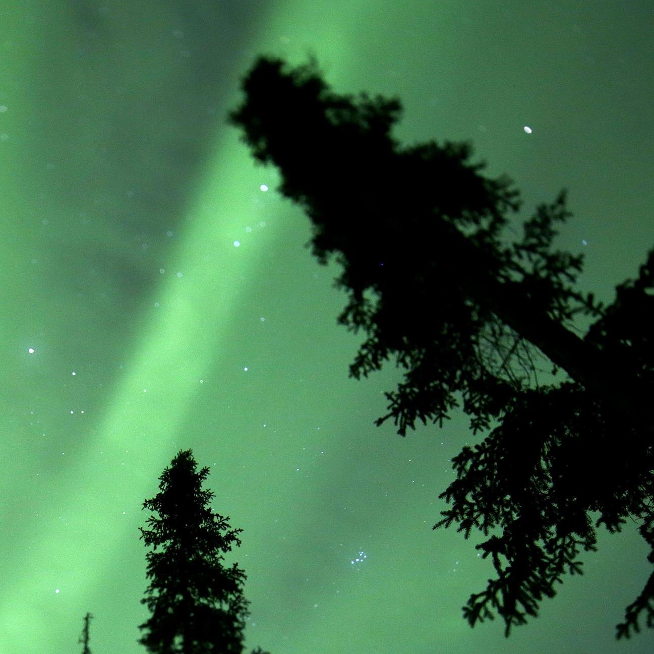 Bonus Scenes - The Last Alaskans