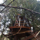 Treehouse under construction.