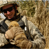 pg-puppies-iraq-army