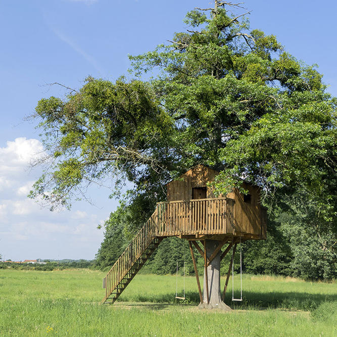 5 cool items to add to your treehouse