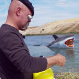 MythBusters vs. Jaws Gallery