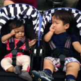 Zoey and Will sneak in some sibling bonding time in their strollers.
