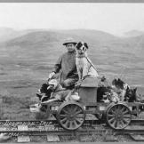 A man and dogs on a rail cart trip from Shelton to Nome, Alaska.