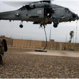 pg-01-animals-helo-afghan-dog