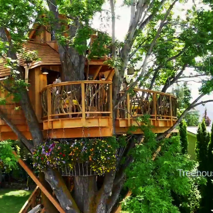 Treehouse Masters Treehouse Point: The Wildest Season Of Treehouse Masters EVER