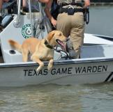 Lone Star Law Ruger Narcotic Sniffing K9