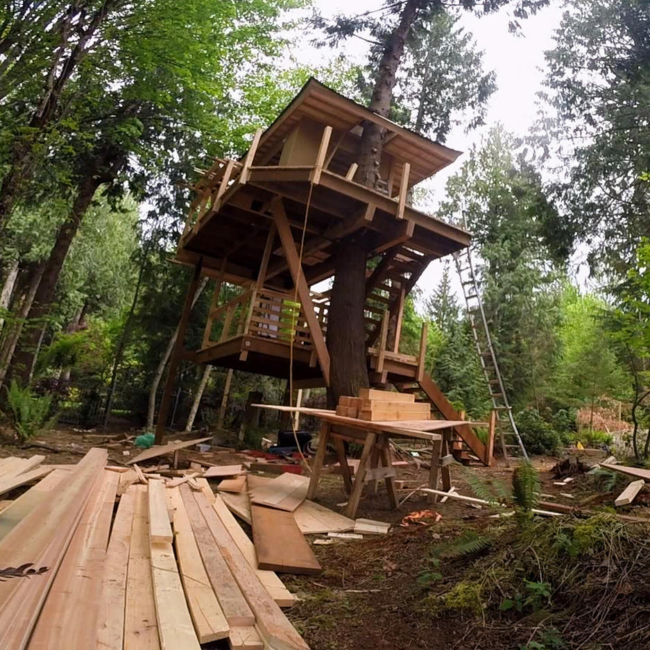 Treehouses in 90 Seconds