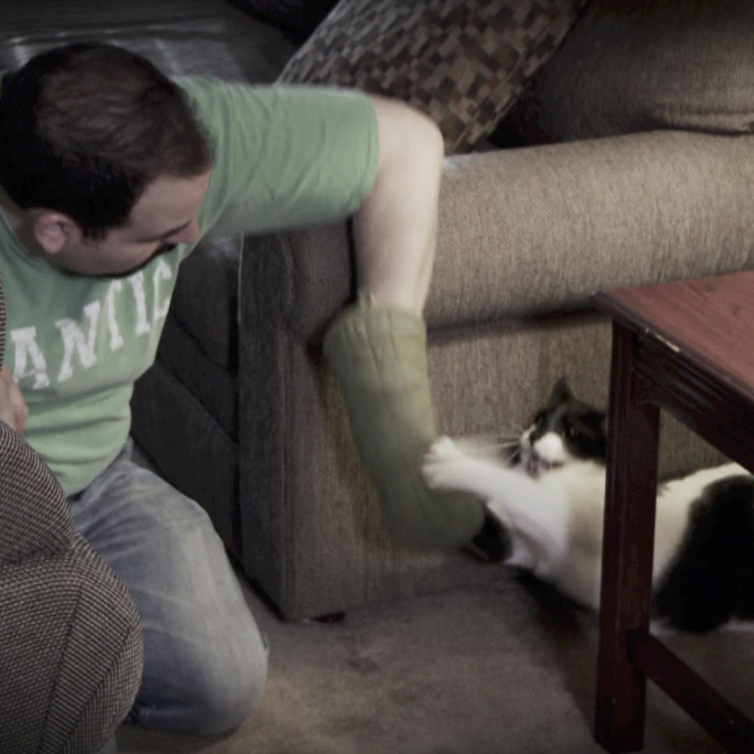 One Nervous Owner Leads to One Nervous Cat