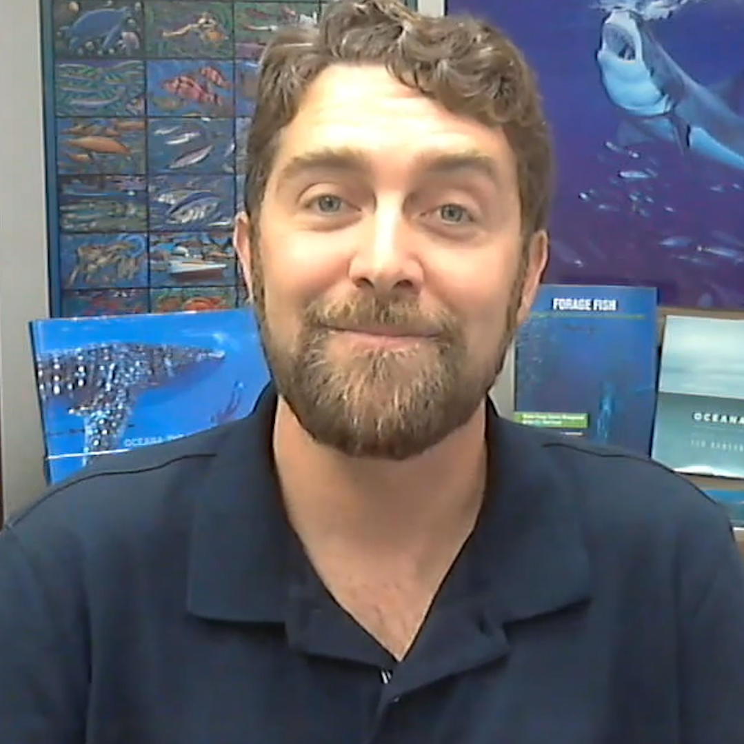 The Daily Shark Feed with Dr. Geoff Shester