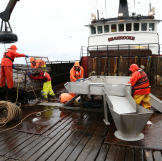 The Seabrooke crew hard at work.