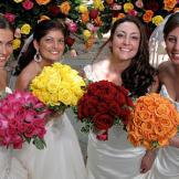 Meet the brides