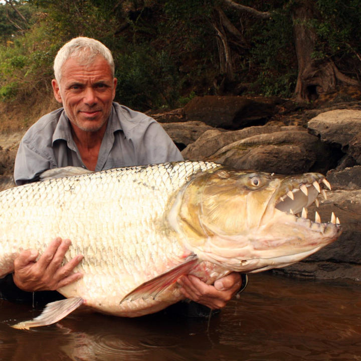 fish guide river monsters animal planet