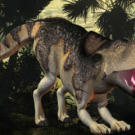 More primitive than the ceratopsids, Proceratops belonged to an earlier genus and lacked well-developed horns. Which dinosaur enjoyed a diet of coarse leaves? Click to next page to find out.