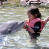Hannah feeds a dolphin.