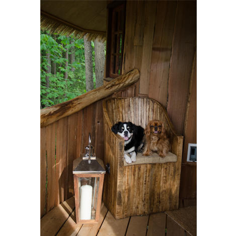 the dogs of the african safari hut building habitatstreehouse masters - Treehouse Masters Inside