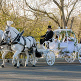 For American gypsy brides, the preferred method of wedding day transportation is horse and carriage. You can take one on a highway, right?