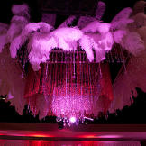 Feathers and dramatic lighting set the scene for the Valentine's Day Ball.