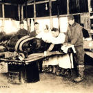 As with the men they served horses suffered a great deal during the Great War as unprecedented quantities of artillery were lobbed at each other by opposing forces in an attempt to bleed the other white. Fortunately for this horse the US Army Signal Corps was ready to receive and treat it.
