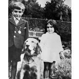 In her first film, Lassie Come Home, Elizabeth Taylor worked with one
