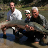 Jeremy Wade holds a nearly 7-feet-long, 111-pound alligator gar with M