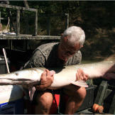 Alligator gar, like all fish, should be put back into the water as soo